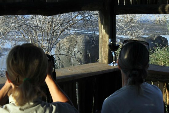 Manyara Ranch Conservancy : Game viewing from blinds on location