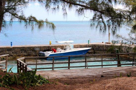 Bahama Boat Tours: The boat