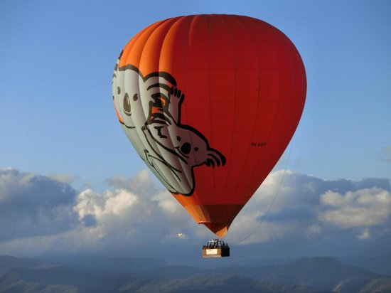 Hot Air Balloon Gold Coast: We love how the koala balloon were in sight rather than flying on it