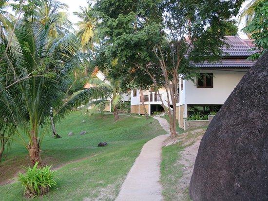 Woodlawn Villas: path from pool to villas
