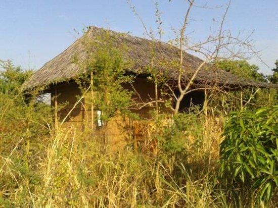 Ikweta Safari Camp : one of the tents