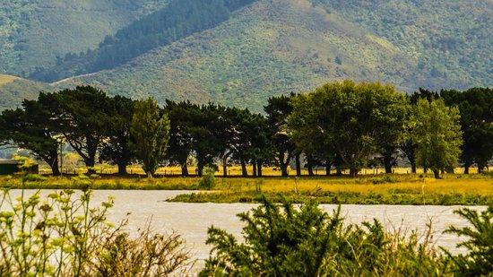 Featherston, Nueva Zelanda: Wairarapa lake