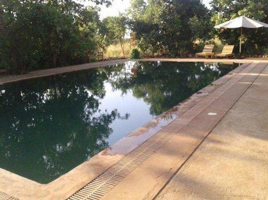 Ikweta Safari Camp : swimming pool