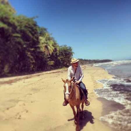 Caribe Horse Riding Club: on the beach