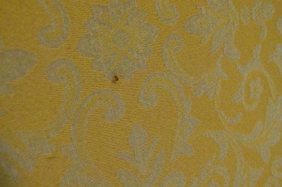 Ezdan Hotel: bed bugs