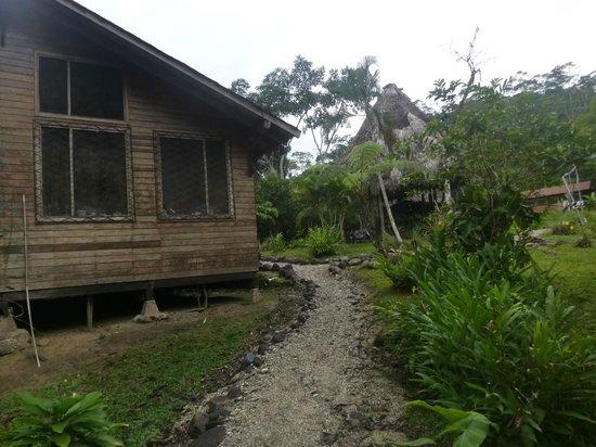 Arajuno Jungle Lodge : By the cabin
