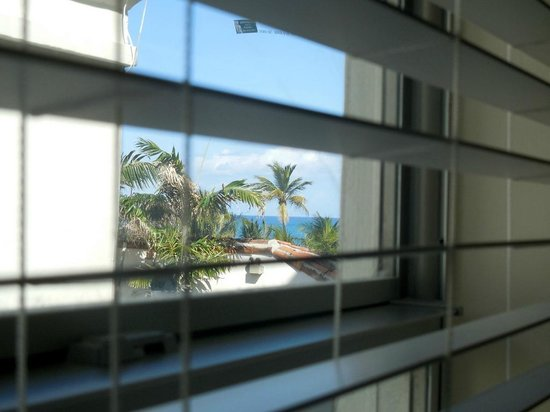 Winter Haven, Autograph Collection: View from room, Palm trees!