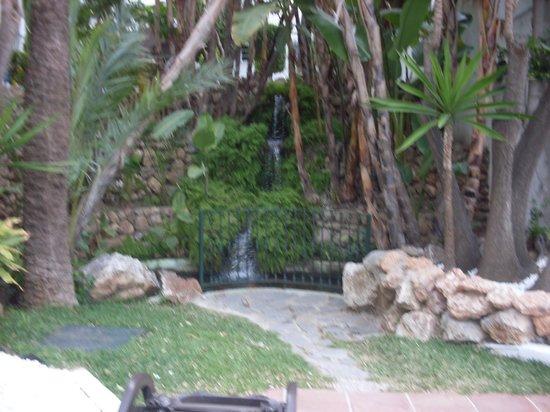 Royal Oasis Club at Pueblo Quinta: garden