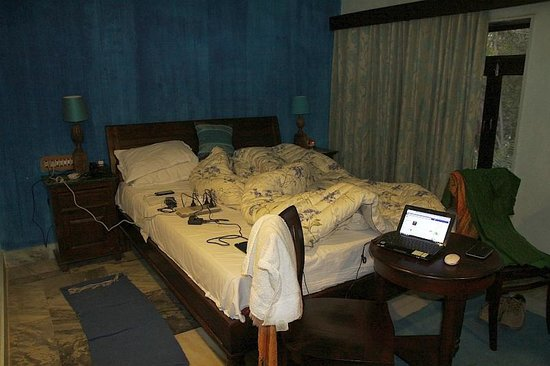 Rudraneel Villa: our room