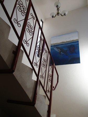 Baja Backpackers: Stairway