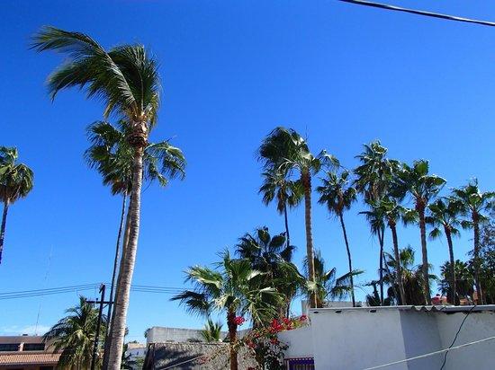 Baja Backpackers: So blue :)