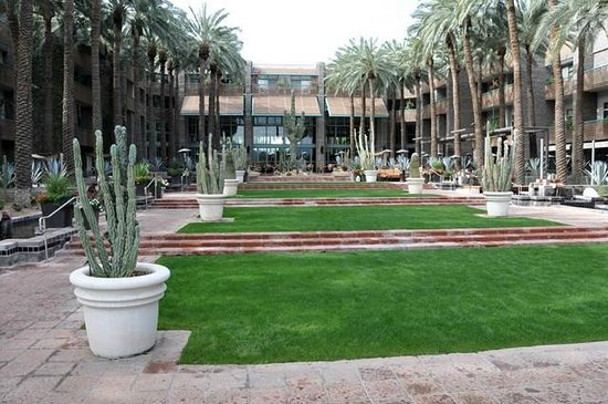 Hyatt Regency Scottsdale Resort and Spa at Gainey Ranch: Jardin central