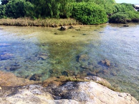 Alpat Island: естественные бассейны