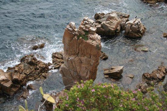 Jardí Botànic Marimurtra: Вид со смотровой площадки