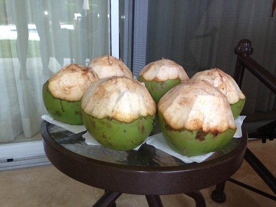 Villa del Mar: Coconuts made our week! Thank you!!!