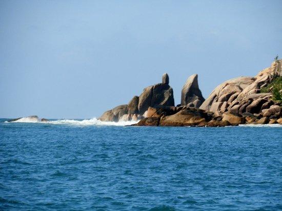 Ondanca Boat Trips: Mar