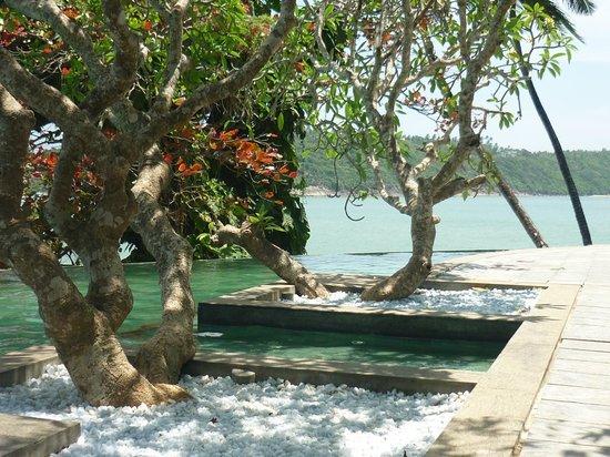 Closenberg Hotel: piscine