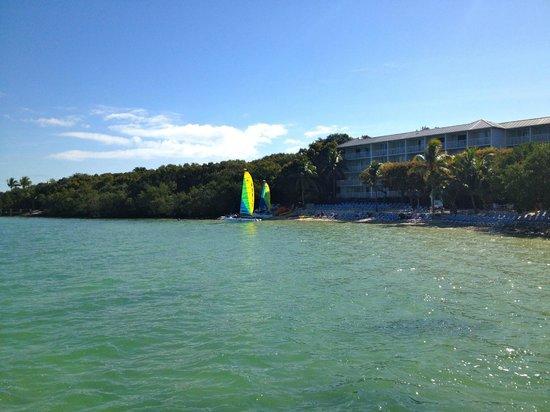 Hilton Key Largo Resort: Beach area