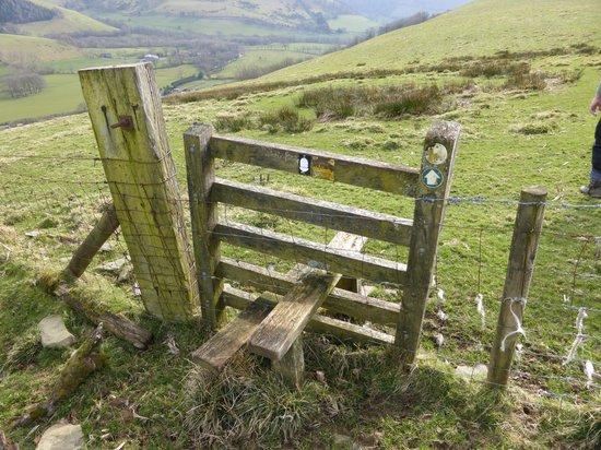Glyndwr's Way: One of many stiles....