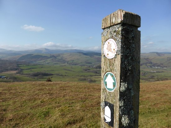Glyndwr's Way: Avove the Dovey Valley