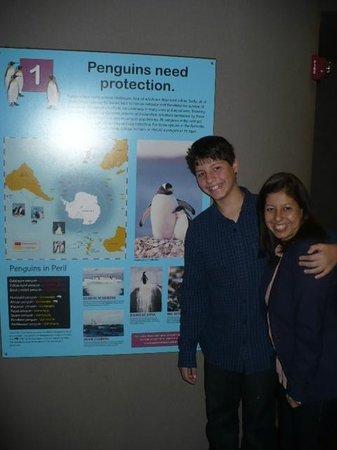 Tennessee Aquarium: Educacional