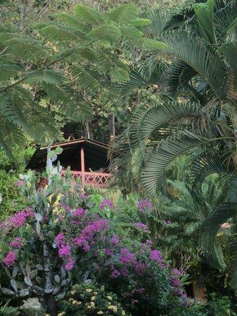 Hotel El Jardin: Wunderschön gebaute Bungalows in einer grünen Oase