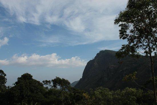 Beauty Mount Tourist Inn : view