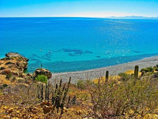 Cabo Pulmo Eco Palapa: Beautiful Waters on the Sea of Cortez