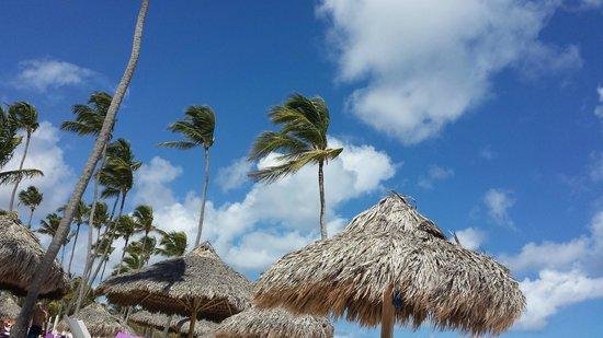 Paradisus Punta Cana: Looking up from Gabi Beach, Royal Service area