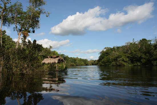 Amazonia Expeditions' Tahuayo Lodge: Gorgeous view