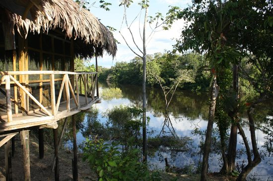 Amazonia Expeditions' Tahuayo Lodge: Tahuayo River from the lodge