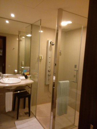 Hotel Del Lago : bathroom