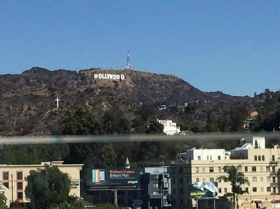 Loews Hollywood Hotel : Hollywood sign from pool top
