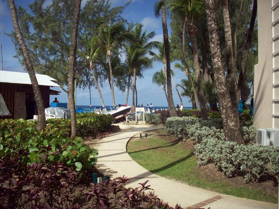 Turtle Beach by Elegant Hotels: the walkway to the beach