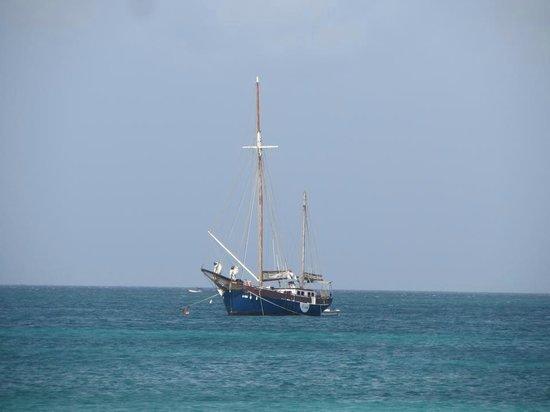 Mi Dushi : velero desde lejos