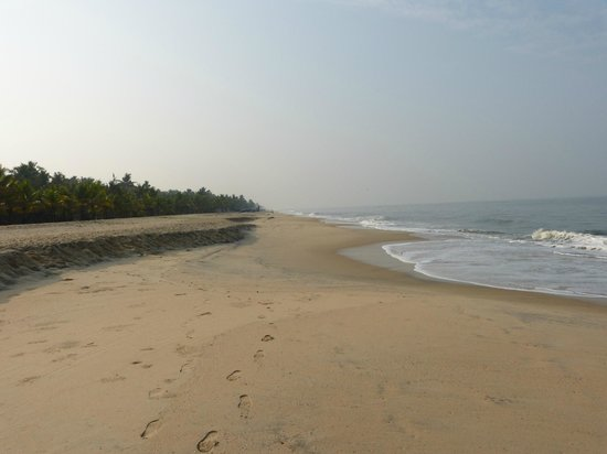 Marari Beach Resort : Beach