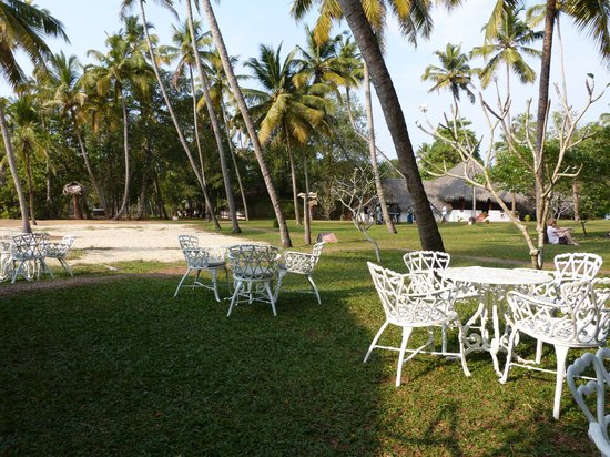 Marari Beach Resort : Near bar