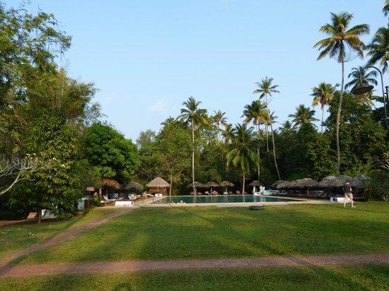 Marari Beach Resort : Pool