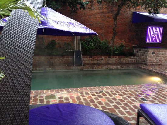 Hotel Le Marais : Saltwater haven, notice the snow on that canopy!  In NOLA!  We were in that pool for hours, perf