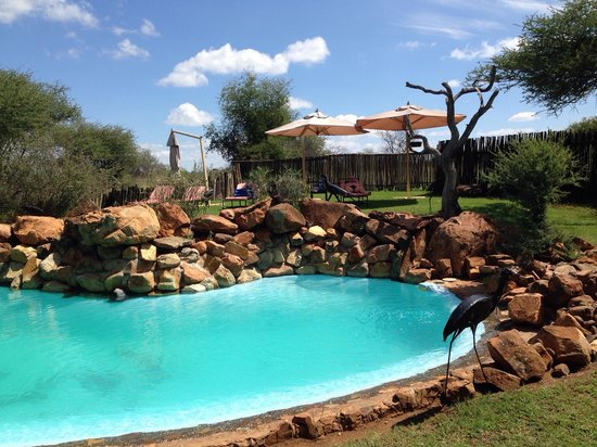 Madikwe River Lodge: Pool