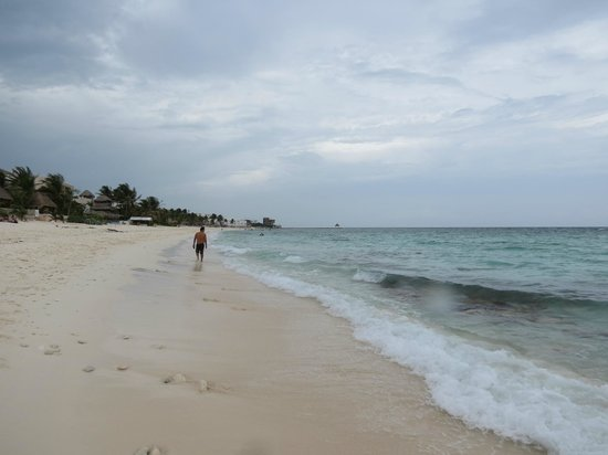 Grand Bahia Principe Tulum : Pretty beach but rocky