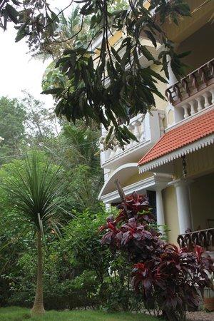Mango Villa seen from the garden