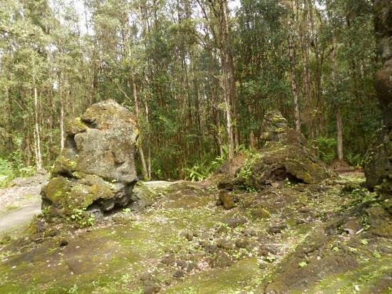 Lava Tree State Park: ね、風情があり、年期の入った庭の石みたい