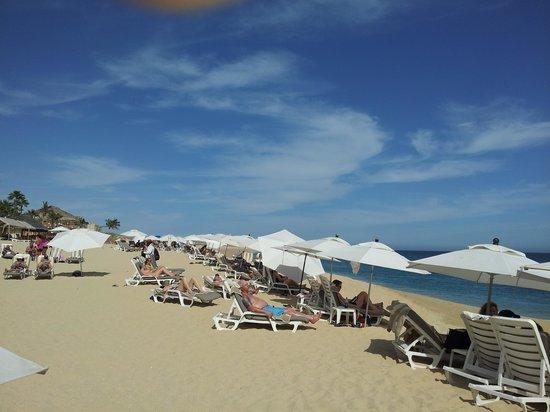 Hacienda del Mar Los Cabos : Beach