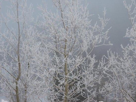 Powder Mountain: Endless Winter