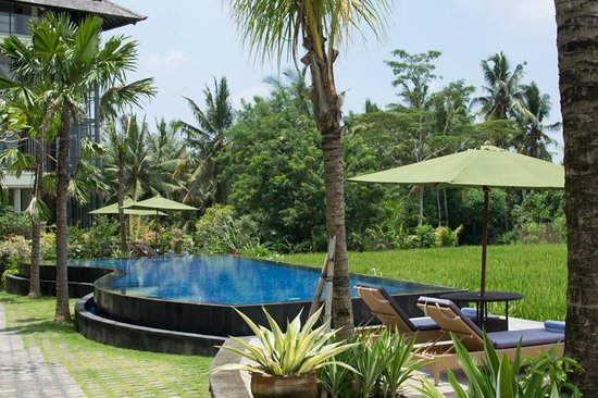 Plataran Ubud Hotel & Spa: The rice field pool