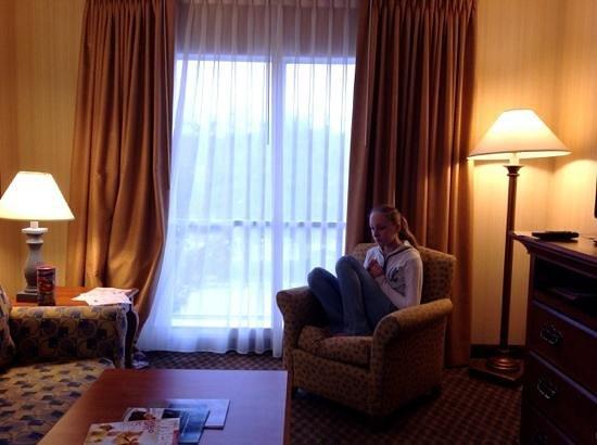 Hawthorn Suites by Wyndham Dallas Park Central : гостиная