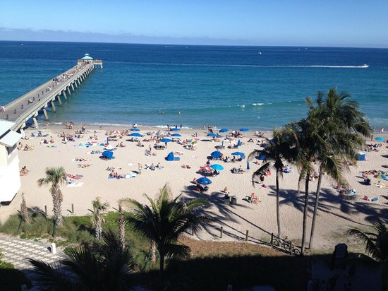 Wyndham Deerfield Beach Resort : view from room