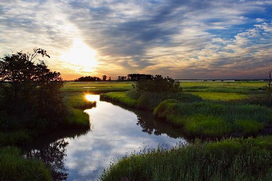 Delaware: Bombay Hook National Wildlife Refuge
