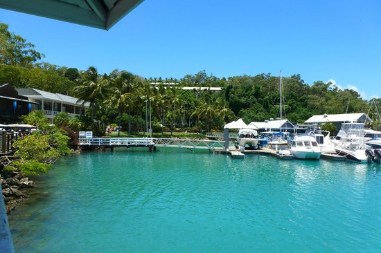 Reef View Hotel : Harbour